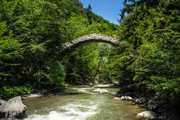 Ponte rainha de tamar Foto Premium