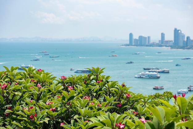 Ponto de vista de cidade de pattaya plumeria rosa ou flor de frangipani na colina Foto Premium