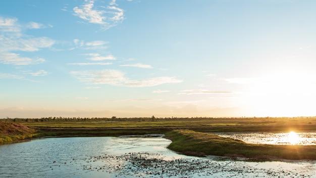 Por do sol bonito panorâmico sobre pantanais em tailândia. Foto Premium