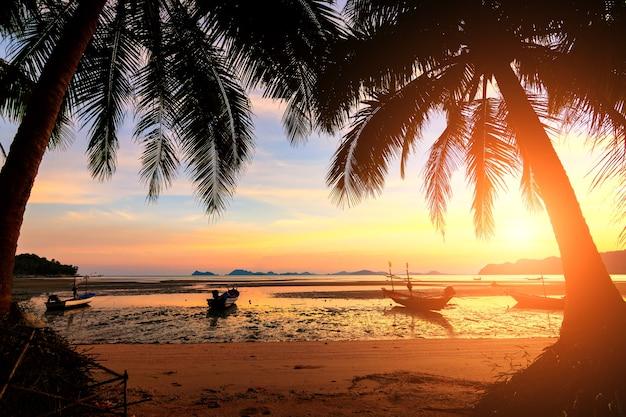 Pôr do sol sobre a praia tropical com coqueiro e barco no koh tao Foto Premium
