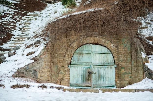 Portas duplas cobertas de hera. porta azul da porta de jardim do vintage em uma fileira verde da conversão. Foto Premium