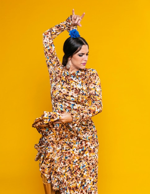 Posando de dançarina de flamenco atraente Foto gratuita
