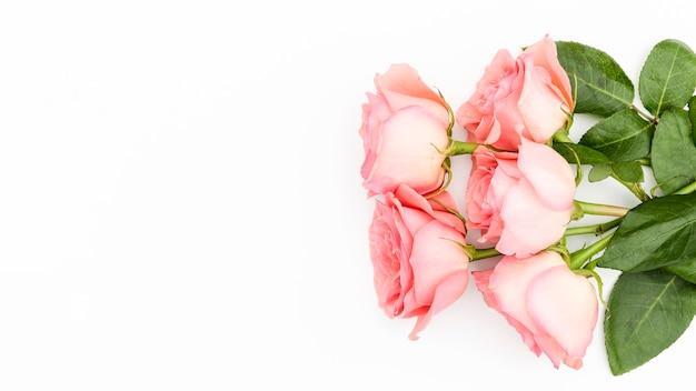 Postura plana de buquê de rosas cor de rosa Foto gratuita