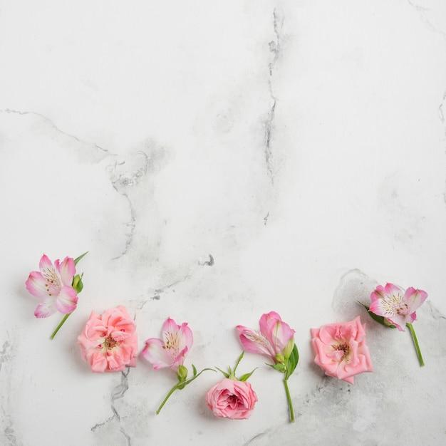 Postura plana de primavera rosas e orquídeas com espaço em mármore de fundo e cópia Foto gratuita
