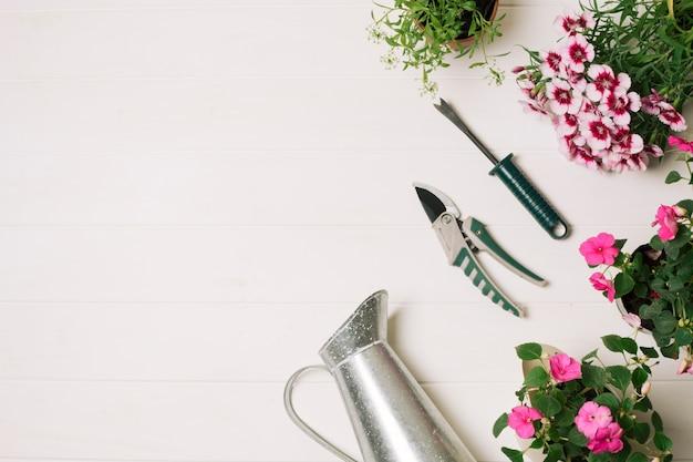 Pote de rega composto com flores Foto gratuita