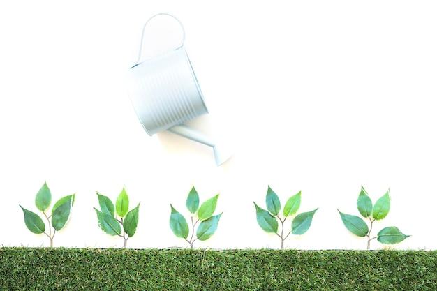 Pote de rega de plantas pequenas Foto gratuita