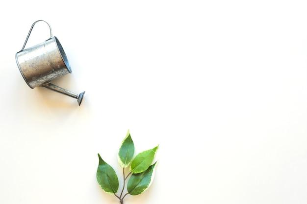 Pote de rega sobre folha verde Foto gratuita