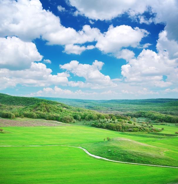 Prado verde na montanha Foto Premium