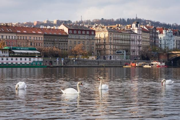 Praga Foto gratuita