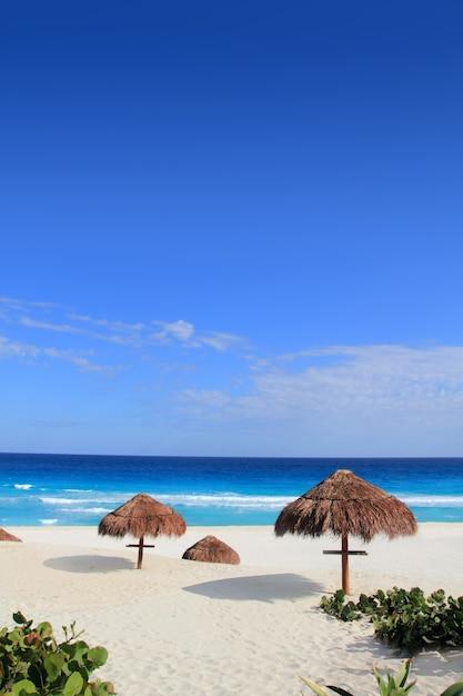 Praia areia mar do caribe turquesa Foto Premium