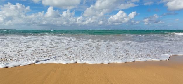 Praia caribenha com céu azul Foto gratuita