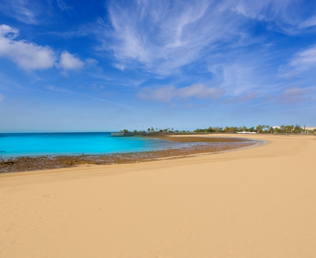 Praia de arrecife lanzarote playa del reducto Foto Premium
