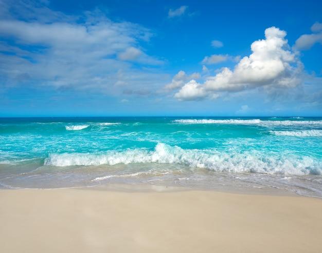 Praia de cancun delfines na zona hoteleira do méxico Foto Premium