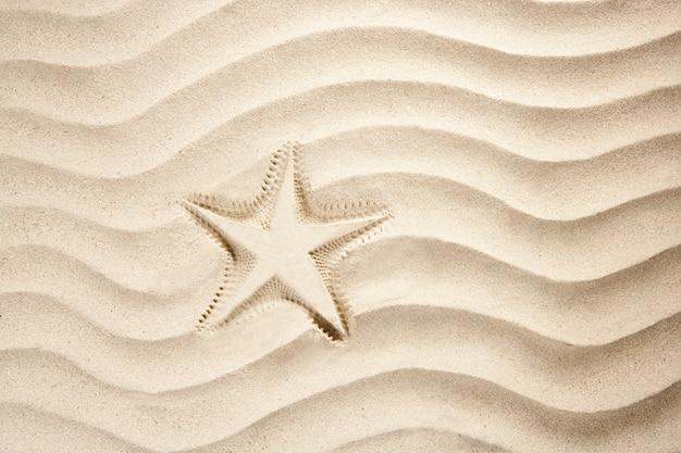 Praia estrela do mar imprimir branco caribe areia verão Foto Premium