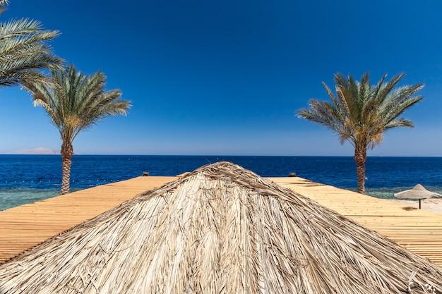 Praia no hotel de luxo, sharm el sheikh, egito Foto gratuita