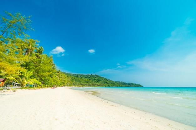 Praia tropical de natureza linda Foto gratuita
