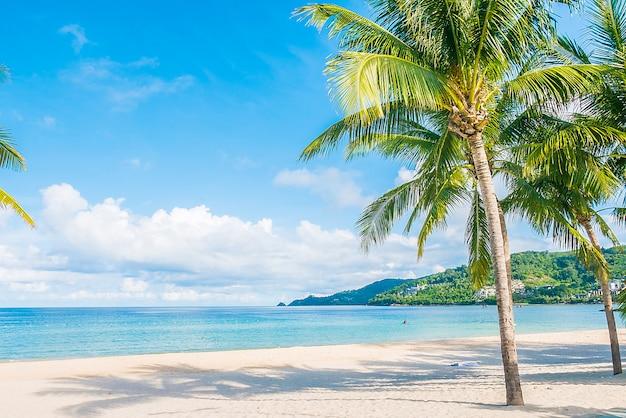 Praia tropical Foto gratuita