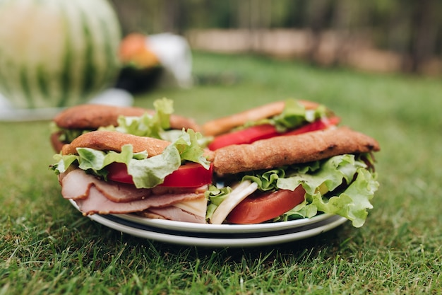 Prato grande de close-up com apetitoso sanduíche fresco na grama verde Foto Premium