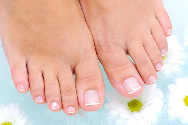 Procedimento de tratamento de spa na água dos pés femininos de beleza Foto gratuita