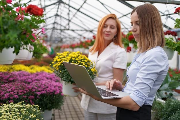 Proprietário de estufa apresentando opções de flores para um cliente varejista em potencial usando um laptop. Foto gratuita