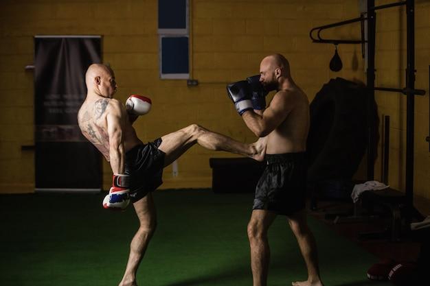 Pugilistas tailandeses praticando boxe Foto gratuita