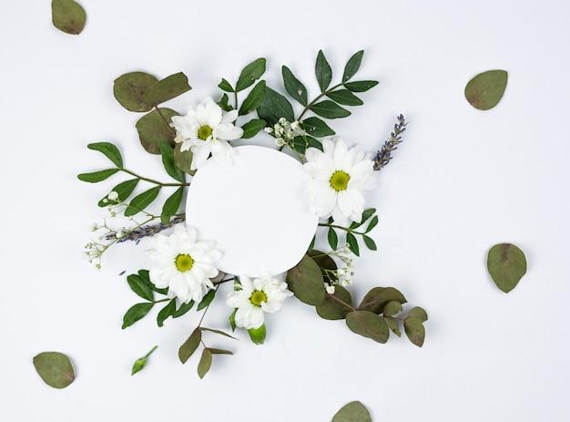 Quadro branco circular sobre margarida branca e flores de respiração do bebê Foto gratuita
