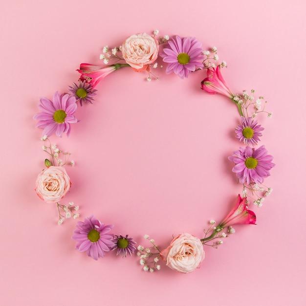 Quadro circular em branco feito com flores em fundo rosa Foto gratuita