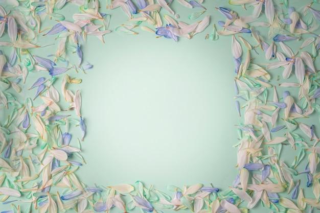 Quadro com pétalas de flores de tons diferentes, com pétalas azuis e brancas sobre um fundo verde claro. Foto Premium