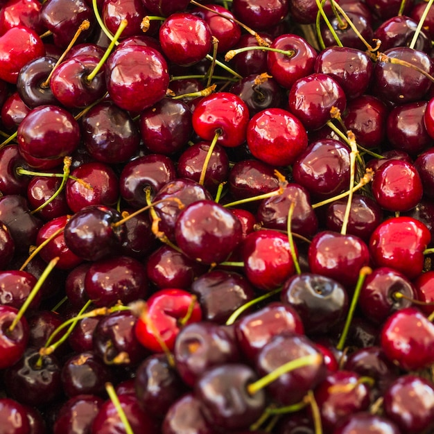 Quadro completo de cerejas vermelhas Foto gratuita