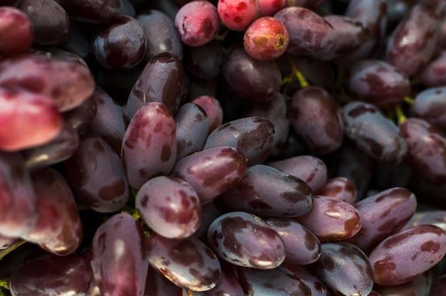 Quadro completo de uvas vermelhas Foto gratuita