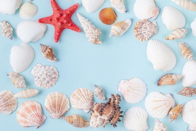 Quadro de conchas do mar e estrela do mar sobre fundo azul Foto Premium