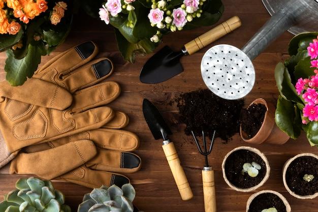 Quadro de ferramentas para jardinagem Foto gratuita