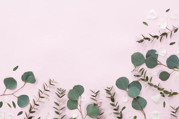 Quadro de flores e folhas em fundo rosa, vista plana, vista superior Foto Premium