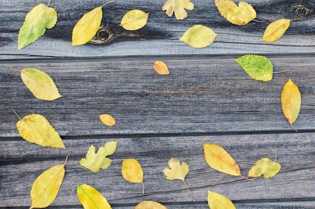 Quadro de folhas amarelas, fundo de madeira. Foto Premium