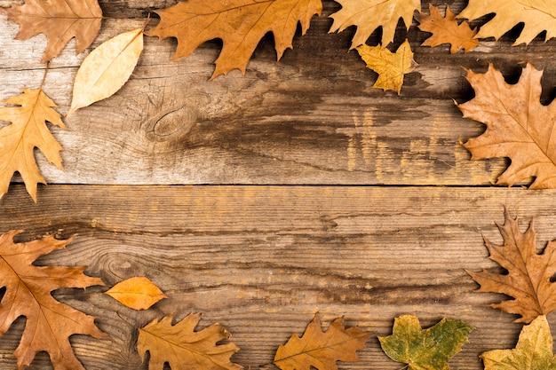 Quadro de folhas em fundo de madeira Foto gratuita