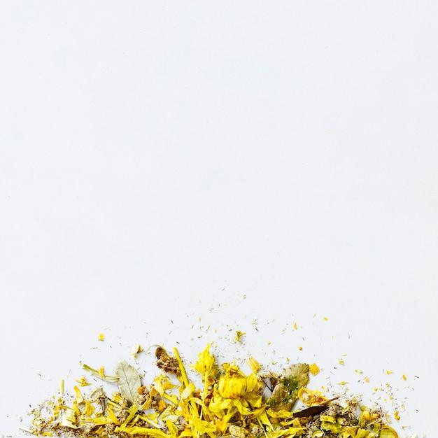 Quadro de folhas secas de vista superior Foto gratuita