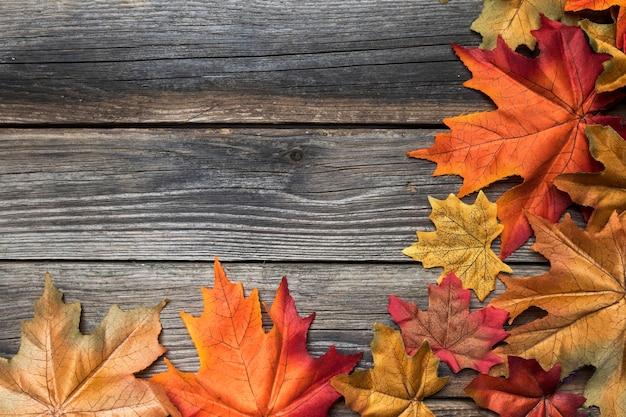 Quadro de vista superior com folhas coloridas e cópia-espaço Foto gratuita