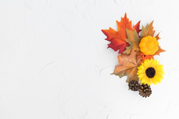 Quadro de vista superior com folhas e girassol Foto gratuita