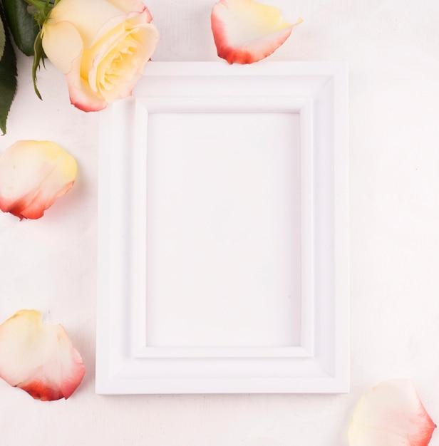 Quadro em branco com pétalas de rosas Foto gratuita