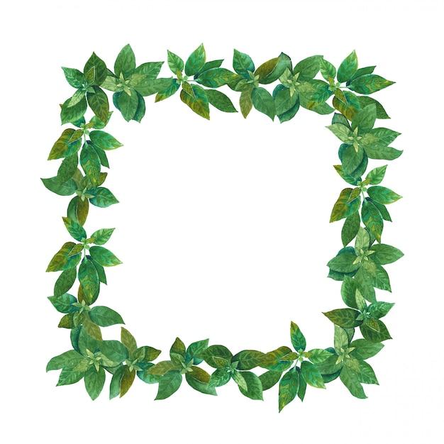 Quadro erval quadrado da aguarela verde. Foto Premium