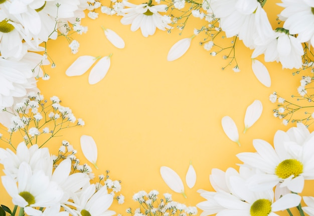 Quadro floral circular de vista superior com fundo amarelo Foto gratuita