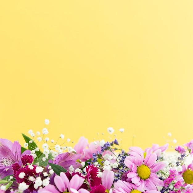 Quadro floral de vista superior com cópia-espaço Foto gratuita