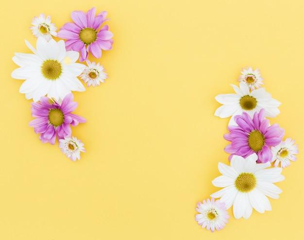 Quadro floral de vista superior com fundo amarelo Foto gratuita