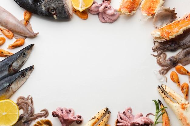 Quadro formado pela mistura de frutos do mar Foto gratuita