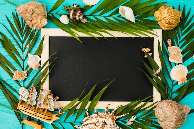 Quadro-negro e folhas de plantas com conchas e navio de brinquedo Foto gratuita