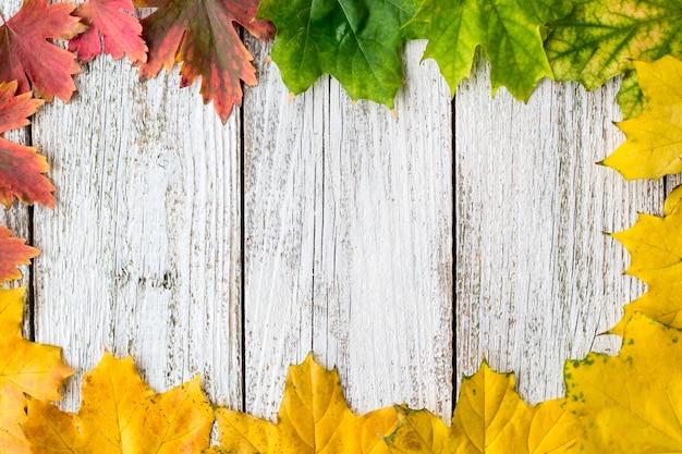 Quadro sazonal de maple outonal deixa com gradiente de cor no fundo branco de madeira Foto Premium