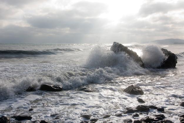 Quebrando ondas Foto gratuita