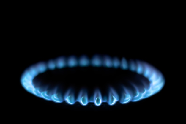 Queima de chama de queimador de fogão a gás azul sobre um fundo preto. gás azul no escuro Foto Premium