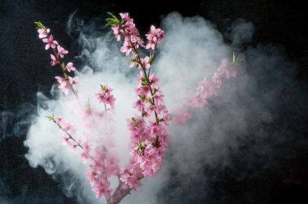 Raminho de flores de cerejeira em gotas de água e fumaça no preto Foto Premium