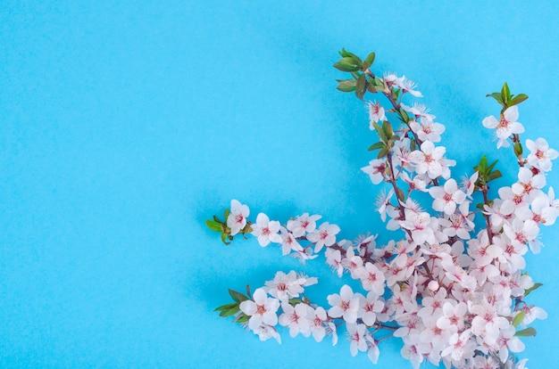 Ramo com delicadas flores brancas e rosa Foto Premium